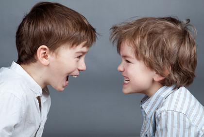Litigi tra fratelli